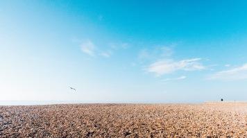 Brightonblog6
